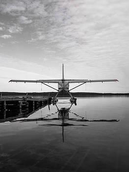 Fly Small Dream Big by Dan Kincaid