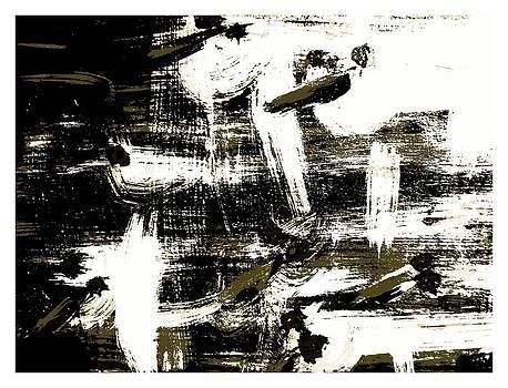 Flying White Birds by Krzysztof Spieczonek