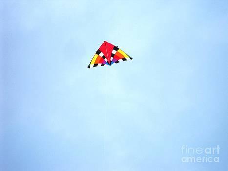 Flying High by Lisa Gifford