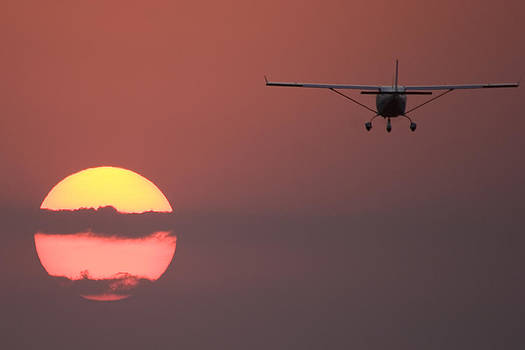 Flying into the Sun by Paul Job