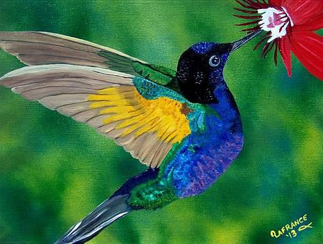 Flying Jewel by Debbie LaFrance