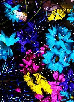 Anne-Elizabeth Whiteway - Flying Petals