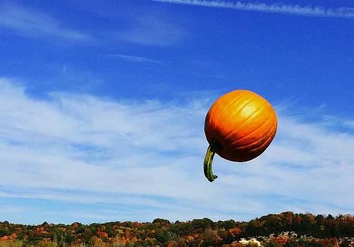 Flying Pumpkin by Shawn Wood