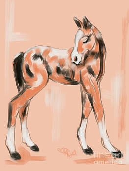 Foal Peach by Go Van Kampen