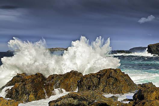 Foaming Breakers by Spencer Dove