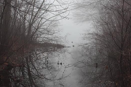 Fog 1 by Linda Clearwater