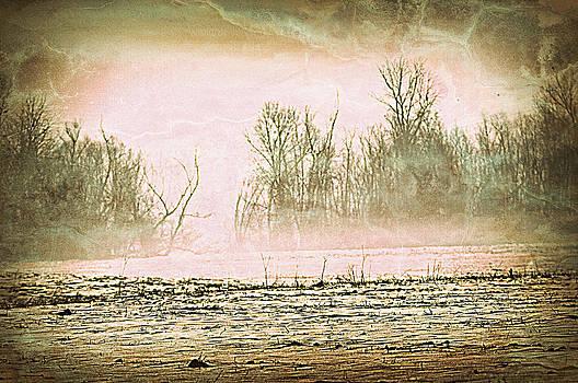 Marty Koch - Fog Abstract 1