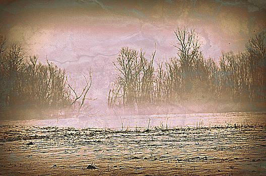 Marty Koch - Fog Abstract 2