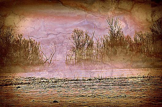 Marty Koch - Fog Abstract 3