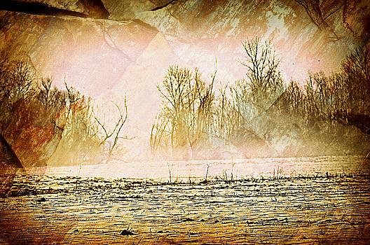 Marty Koch - Fog Abstract 5