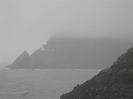 Fog At The Coast by Yvette Pichette