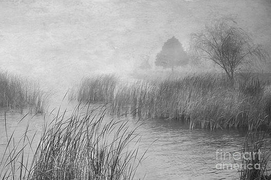Fog at the Lake by Len Bishop