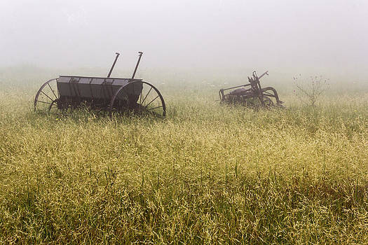 Fog covered Field by Dana Moyer