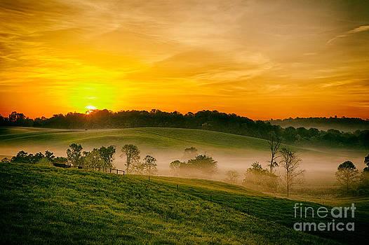 Fog Farms and Fields II by Dan Carmichael
