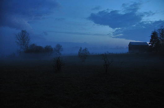 Fog in the Country by Tanis Crooks