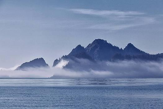 Fog in the Kenai by Daniel Sands
