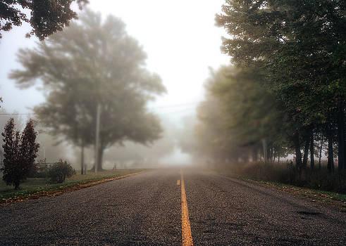 Fog on Fenn Road by LaTrice Dixon