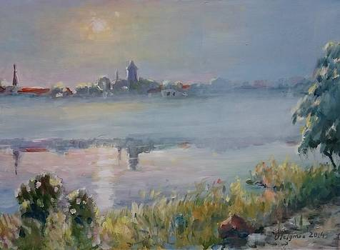 Fog on Small-Viik by Ylo Telgmaa
