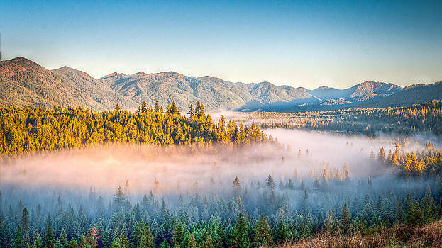Fog on the Bend by Scott Presnell