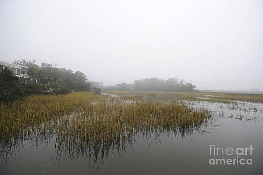 Dale Powell - Fog over the Marsh