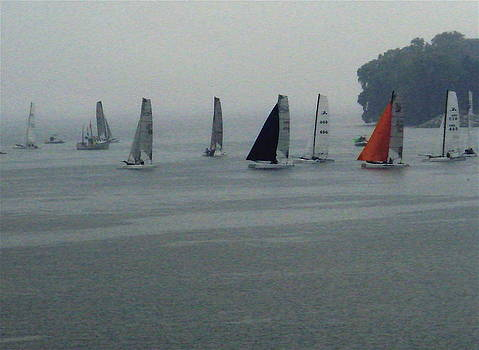 Fog Racing by Ethel Rossi