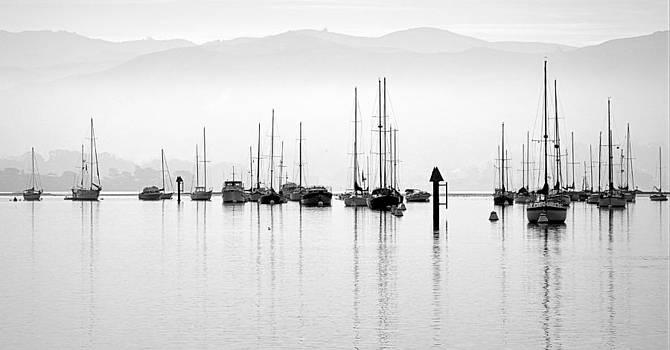 Fog Settles on Morro Bay by AJ  Schibig