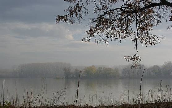 Fog by Sonya Ragyovska
