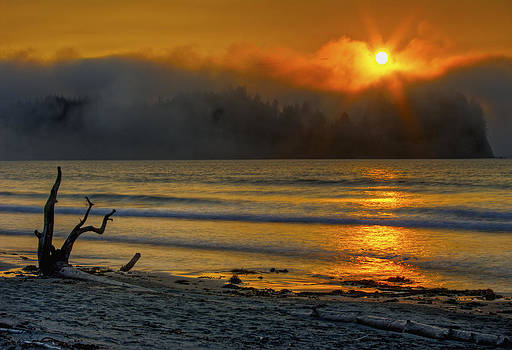 Fog Sunset by Rod Mathis