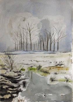 Fog by Vaidos Mihai