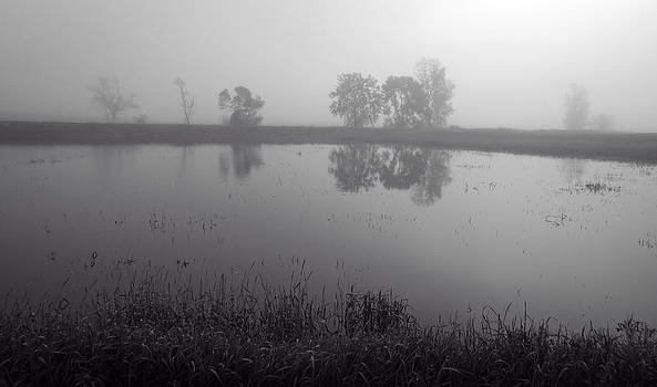 Ray Van Gundy - Foggy and Flooded Field