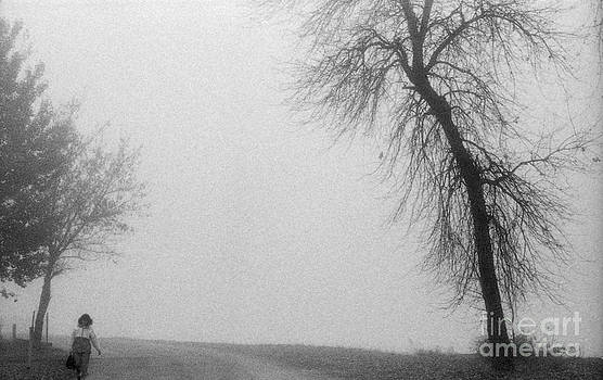 Andre Paquin - Foggy Autumn