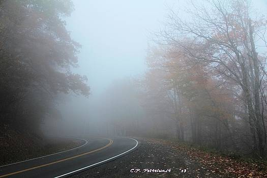 Foggy Autumn Day by Carolyn Postelwait