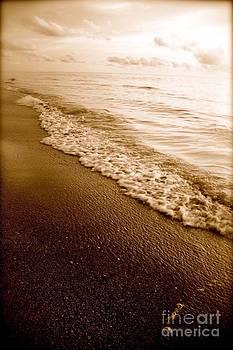 Foggy Beach by AR Annahita