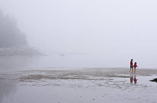 Arkady Kunysz - Foggy beach
