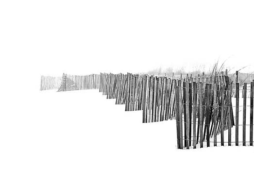 Foggy Beach by Gej Jones