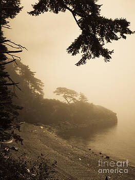 Foggy beach by Jeff Loh