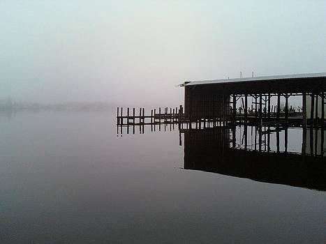 Foggy Boathouse  by Wayne Pellenberg