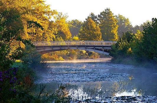 Foggy Bridge by Sean Murray