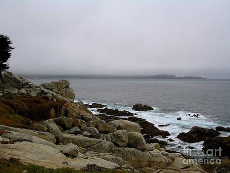 Danielle Groenen - Foggy California Coast