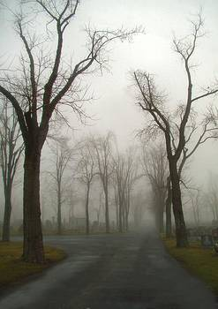 Gothicrow Images - Foggy Cemetery Road