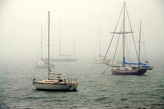 Foggy Day On A Sailboat by Diana Berkofsky