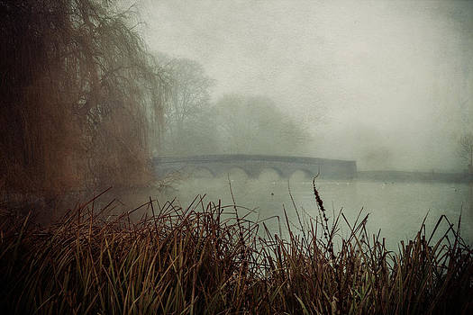 Foggy Five Arches by Stuart Gennery