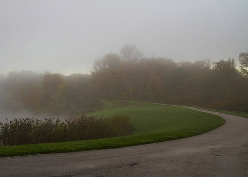 Foggy Indigo   by Tim Fitzwater