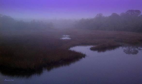 Buzz  Coe - Foggy Morning at Aripeka Studio XXIII