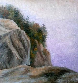 Foggy Morning at Cathedral Ledge by Sharon E Allen