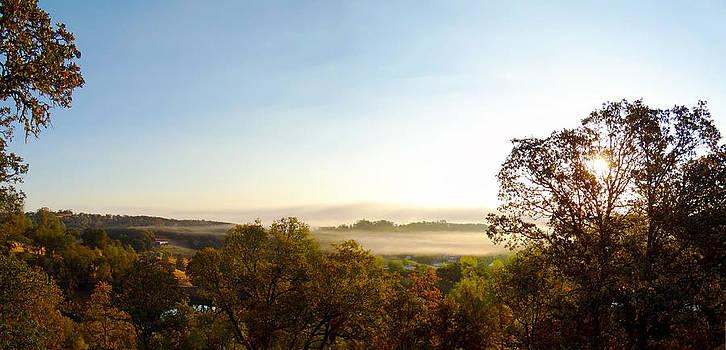 Foggy morning at Spirit Lake Sanctuary in Lower Lake CA by G Matthew Laughton
