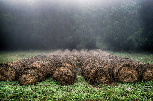 Foggy Morning Bales I by David Morel