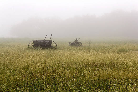 Foggy morning by Dana Moyer