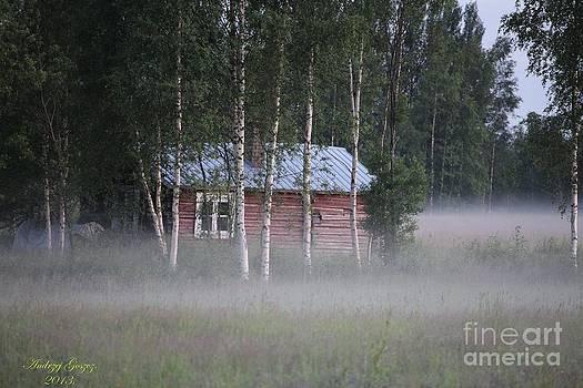 Foggy morning dream  by  Andrzej Goszcz