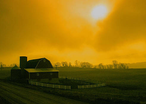 Foggy Morning Farm by David Frankel